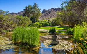 Spectacular Private Botanical Sanctuary Paradise Valley